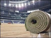 Газон на новом стадионе Тоттенхэма